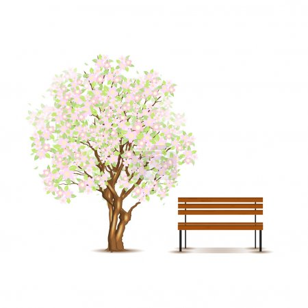 Traditional japanese tree and bench