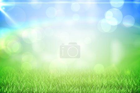 Grass under a sunny sky