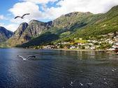 Fishing village in Norway