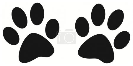 Footprint of two dogs