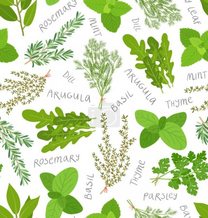 Herbs pattern on white