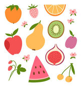 Stylized flat fruits berries and pink flowers vector collection