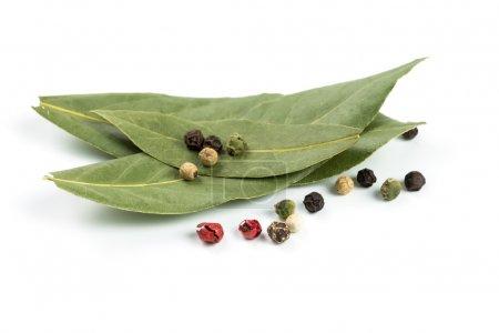 Bay leaf and pepper