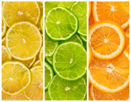 Photo pour Arrière-plan avec agrumes de citron vert. tranches de citron et d'orange - image libre de droit