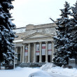 Постер, плакат: The Pushkin Museum of Fine Arts in Moscow Russia