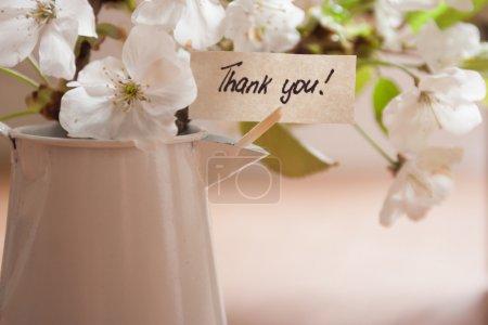 Photo pour Bannière avec remerciements et fleurs blanches de printemps comme fond . - image libre de droit
