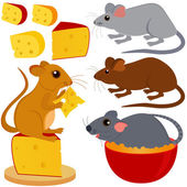 Rat Mouse and Cheese isolated on white