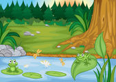 frogs in nature