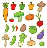 Illustration of vegetables on a white background