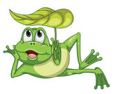 green frog and leaf