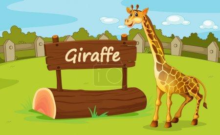 Illustration pour Illustration de l'enclos animal au zoo - image libre de droit