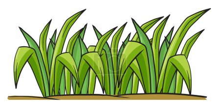 Illustration for Illustration of grass on a white background - Royalty Free Image