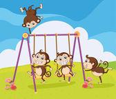 Monkeys playing on swing