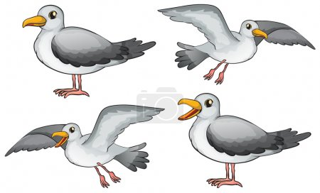 Illustration for Illustration of four birds on a white background - Royalty Free Image