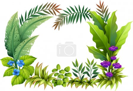Illustration for Illustration of plants and flowers on a white background - Royalty Free Image