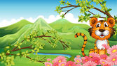 A tiger near the flowers across the mountains