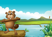 A beaver above a floating trunk holding a piece of wood
