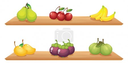 Illustration for Illustration of the six different kinds of fruits in the wooden shelves on a white background - Royalty Free Image