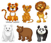Illustration of the six wild animals on a white background