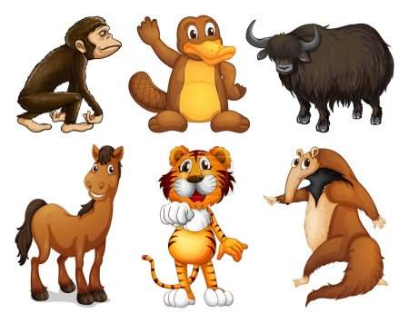 Six different kinds of four-legged animals