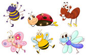 Different bugs and insects
