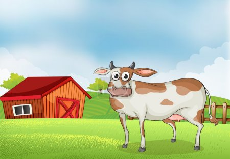 A cow in the farm with a wooden house at the back