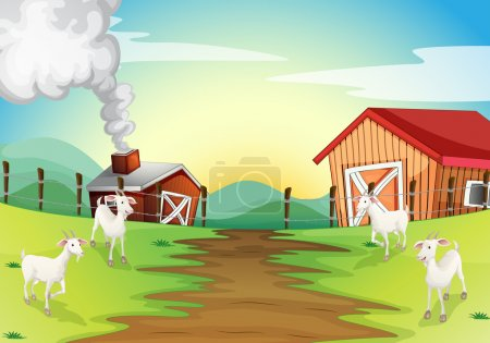 Illustration for Illustration of the four goats in the farm - Royalty Free Image