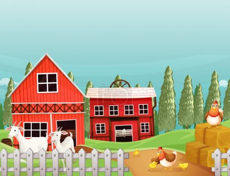 A farm with goats and chickens