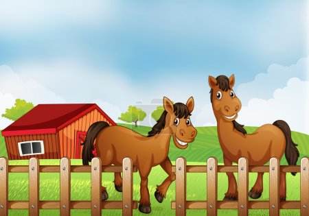 Horses inside the wooden fence with a barn