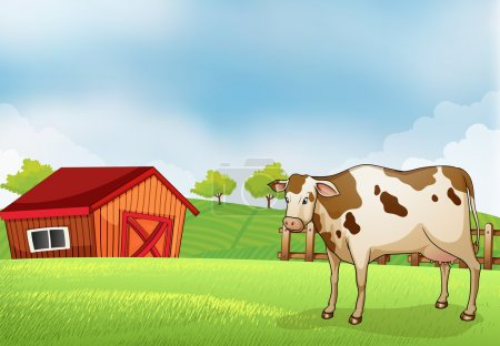A cow in the farm with a barn house
