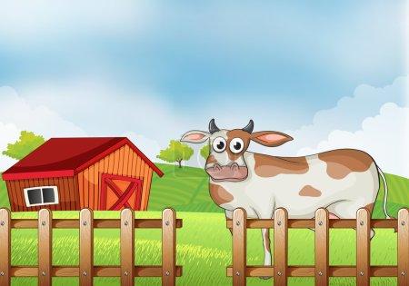 A farm with a cow