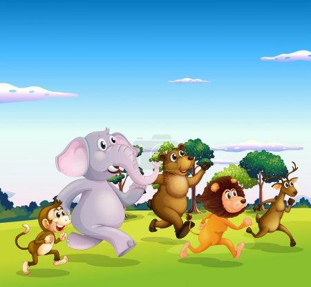 Five wild animals running