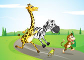 Poster Animals running at the street