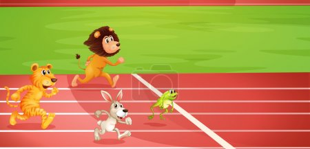 Four animals doing a race