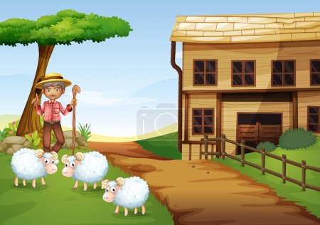 An old man at the farm with three sheeps