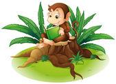 A monkey reading above a stump