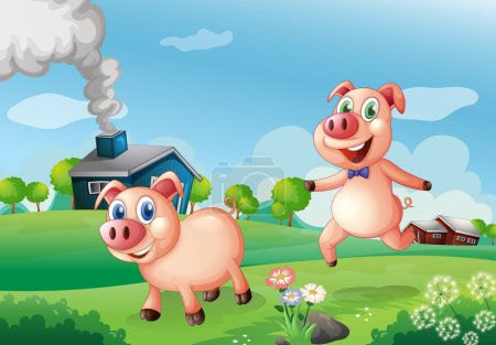 Two happy pigs at the farm
