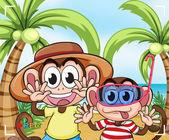 Legrační opice na pláži