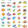 Illustration of a group of different fishes on a w...