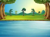 Egy erdő, egy folyó