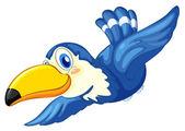 A blue bird
