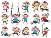 Skupina opic
