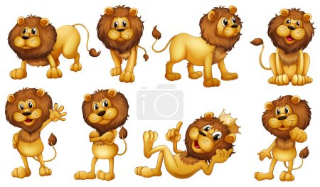 Illustration for Illustration of the brave lions on a white background - Royalty Free Image