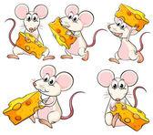 Egy szelet sajtot szállító egerek csoportja