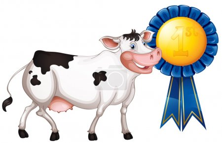 A cow with a first prize ribbon
