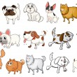 Illustration of the different breeds of dogs on a ...