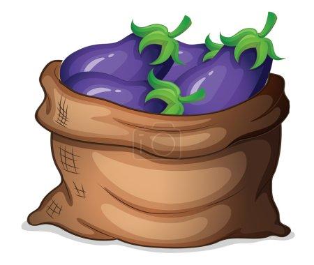 A sack of eggplants