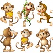 Illustration of the playful wild monkeys on a whit...