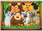 Dřevěný rám se zvířaty
