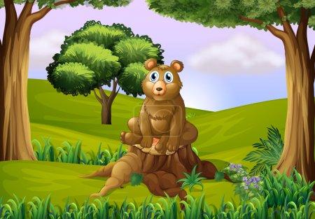 A fat bear above the stump